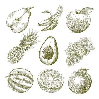 Ręcznie rysowane szkic zestawu owoców. zestaw zawiera pół pokrojoną gruszkę, banana, jabłko, ananasa, awokado w połowie pokrojone, winogrona, pomarańczę, granat, arbuz