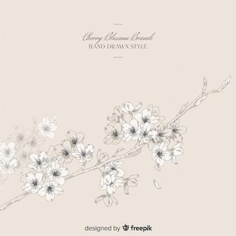 Ręcznie rysowane tła gałąź kwiat wiśni