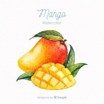 Ręcznie rysowane tła mango