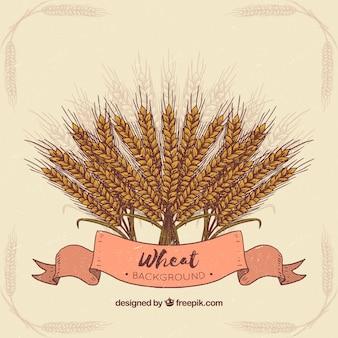 Ręcznie rysowane tła pszenicy