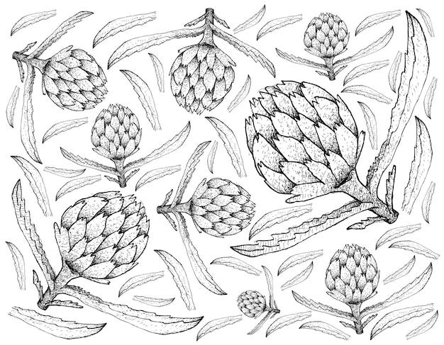 Ręcznie rysowane tła świeżego karczocha roślin
