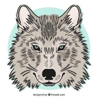 Ręcznie rysowane tle wilka