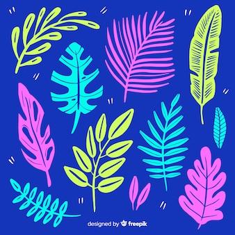 Ręcznie rysowane tropikalne kwiaty i liście