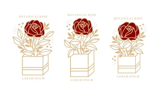 Ręcznie rysowane vintage botaniczny kwiat piwonii róży zestaw
