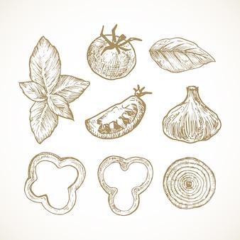 Ręcznie rysowane warzywa i zioła wektor zbiory ilustracji. zestaw krążków pomidora, bazylii, papryki i cebuli oraz szkiców czosnku. doodle naturalnej żywności. odosobniony.