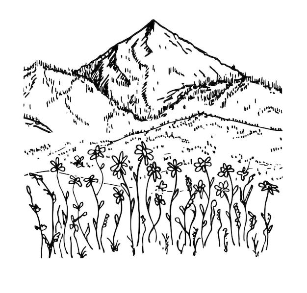 Ręcznie rysowane wektor krajobraz z górami, drzewami i kwiatami w górskiej dolinie projektowanie logo górskiego
