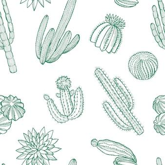 Ręcznie rysowane wzór dzikich kaktusów roślin