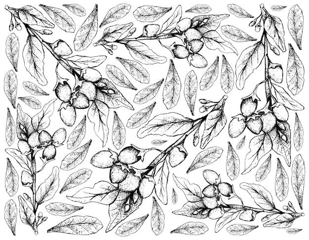 Ręcznie rysowane z jagód goji na białym tle