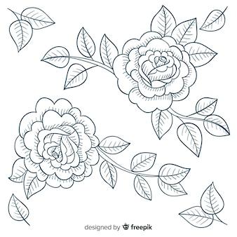 Ręcznie rysowane zabytkowe rodzaje kwiatów