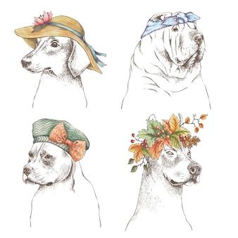 Ręcznie rysowane zarys zestaw śmieszne psy