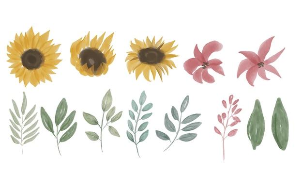 Ręcznie rysowane zbiór elementów słonecznika
