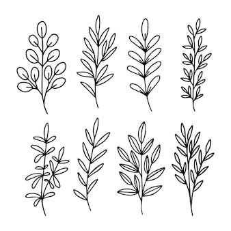 Ręcznie rysowane zestaw gałęzi drzewa. czarny liść eukaliptusa, sylwetki ziół na białym tle. ilustracja botaniczna