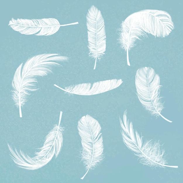 Ręcznie rysowane zestaw graficzny elementu wektora białego pióra