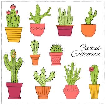 Ręcznie rysowane zestaw kaktusów na ilustracji garnki