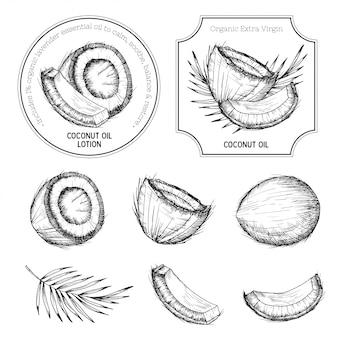 Ręcznie rysowane zestaw kokosowy.
