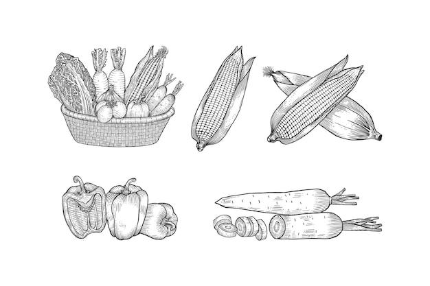 Ręcznie rysowane zestaw kolekcji warzyw kosz