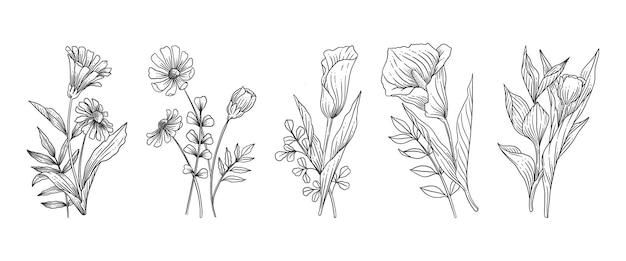 Ręcznie rysowane zestaw kwiatów botanicznych