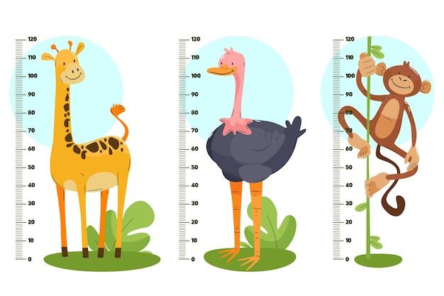 Ręcznie rysowane zestaw mierników wysokości