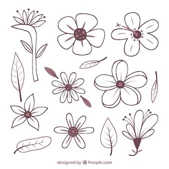 Ręcznie rysowane zestaw tropikalny kwiat