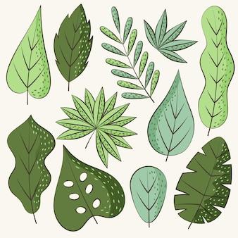 Ręcznie rysowane zielone liście
