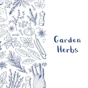 Ręcznie rysowane zioła i przyprawy