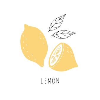 Ręcznie rysowane żółta cytryna. ilustracja na białym tle