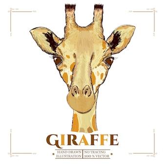 Ręcznie rysowane żyrafa portret wektorowej ilustracji