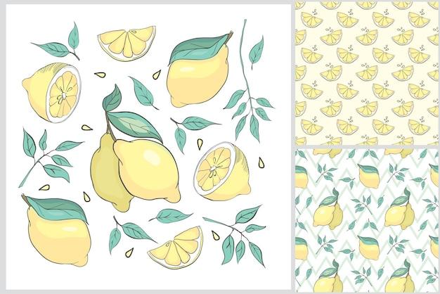 Ręcznie rysowany letni zestaw z cytryną.