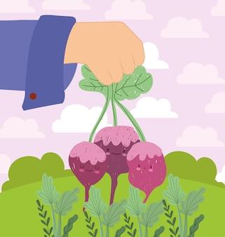 Ręcznie słodkie warzywa