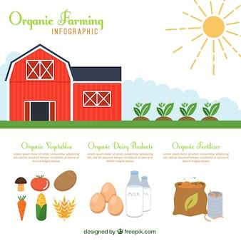 Red gospodarstw rolnych i żywności ekologicznej infografia