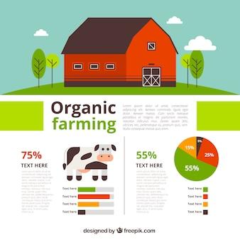 Red stodoła i rolnictwo ekologiczne