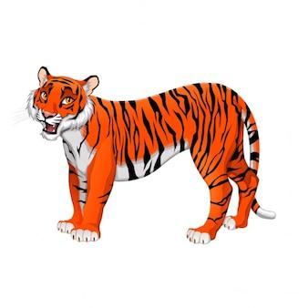 Red tiger kreskówki vector pojedyncze zwierzę