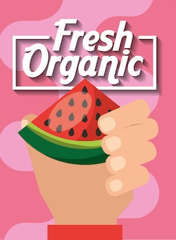 Ręka trzyma arbuza świeżych owoców organicznych