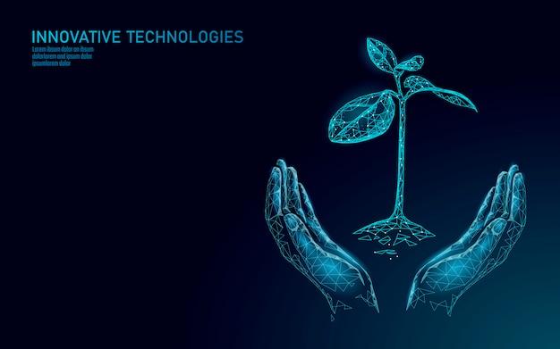 Ręki trzyma rośliny kiełkują ekologicznego abstrakcjonistycznego pojęcie. renderuj 3d liście sadzonki drzew. uratować planetę natura środowisko rosną życie eco wielokąty trójkąty low poly ilustracja