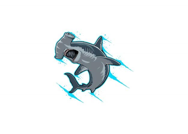 Rekiny młotkowe są gniewne na atakującą reakcję