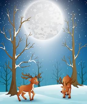 Renifery z kreskówek bawiące się w śnieżną noc lasu