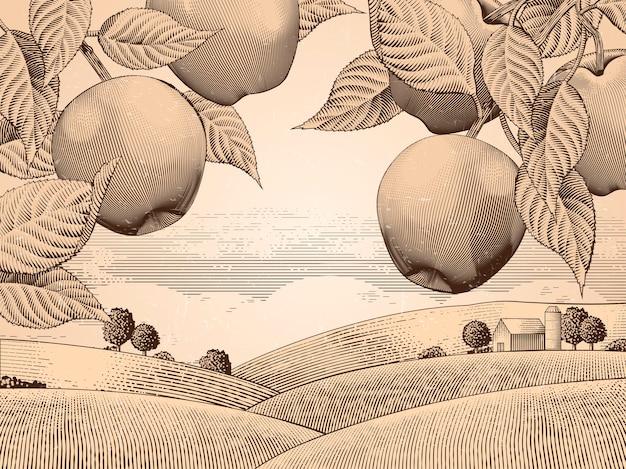 Retro jabłoniowy sad, grawerowanie krajobrazu wiejskiego do zastosowań, atrakcyjne tło