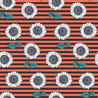 Retro paski wzór z białymi słonecznikami szkicu na czarno-czerwonym tle