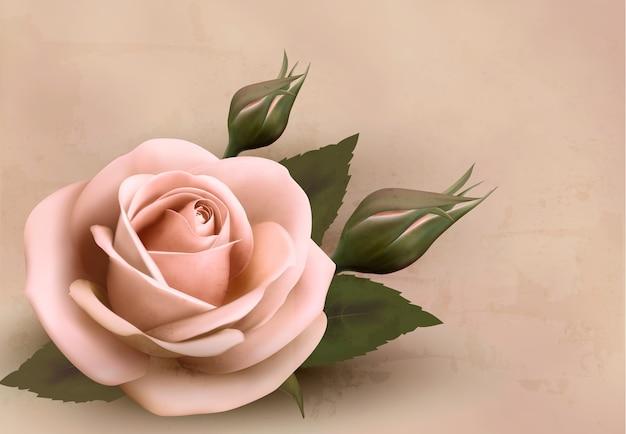 Retro tło z piękną różową różą z pąkami