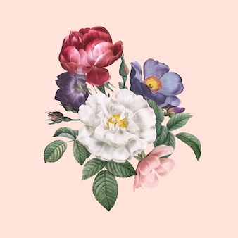 Róże w rozkwicie