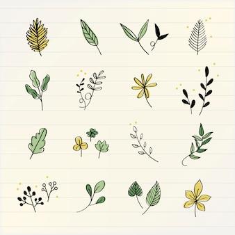 Różne liście doodle wektor zbioru