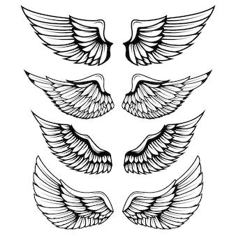 Roczników skrzydła na białym tle. elementy logo, etykiety, godła, znaku, znaku marki.