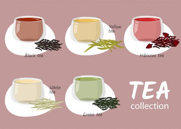 Rodzaje herbaty w szklanych filiżankach.