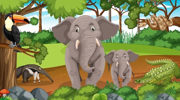 Rodzina słoni z innymi dzikimi zwierzętami w scenie leśnej