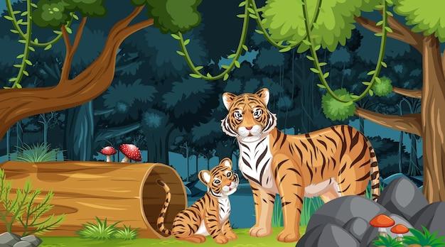 Rodzina tygrysów w tle krajobrazu lasu