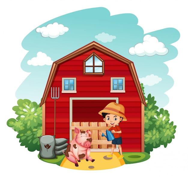 Rolna scena z chłopiec i świnią w gospodarstwie rolnym
