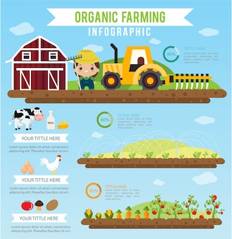 Rolnictwo ekologiczne i czyste jedzenie zdrowe infographic koncepcja.