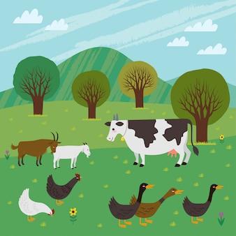 Rolnictwo / gospodarstwo wypełnione żywym inwentarzem, takim jak krowy, kozy, kurczaki i kaczki.