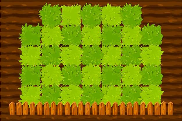 Rolnictwo pole gry z zielonymi krzewami.