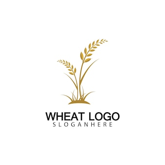 Rolnictwo pszenica logo szablon wektor ikona projektu